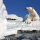 Teaser blogbericht strijden tegen klimaatcrisis